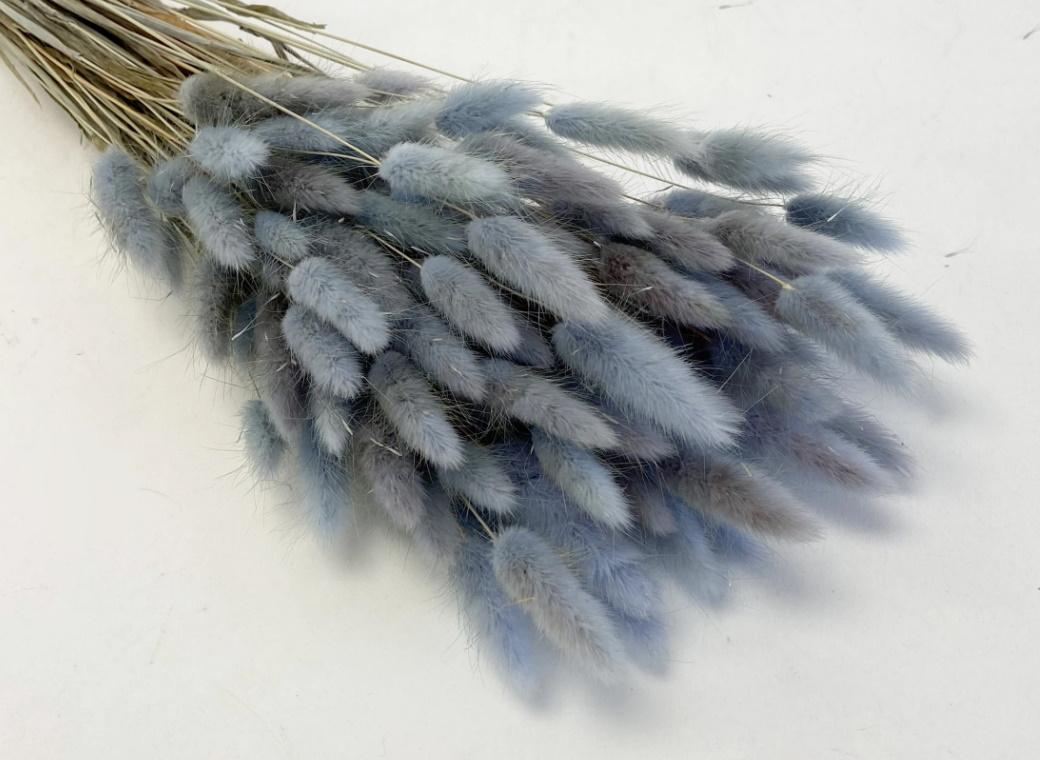 Bunny Tails 50pk Light Blue