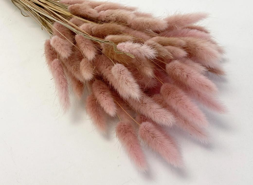 Bunny Tails 50pk Light Pink