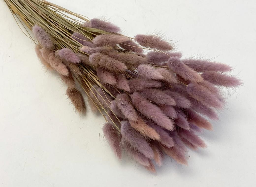 Bunny Tails 50pk Ombre