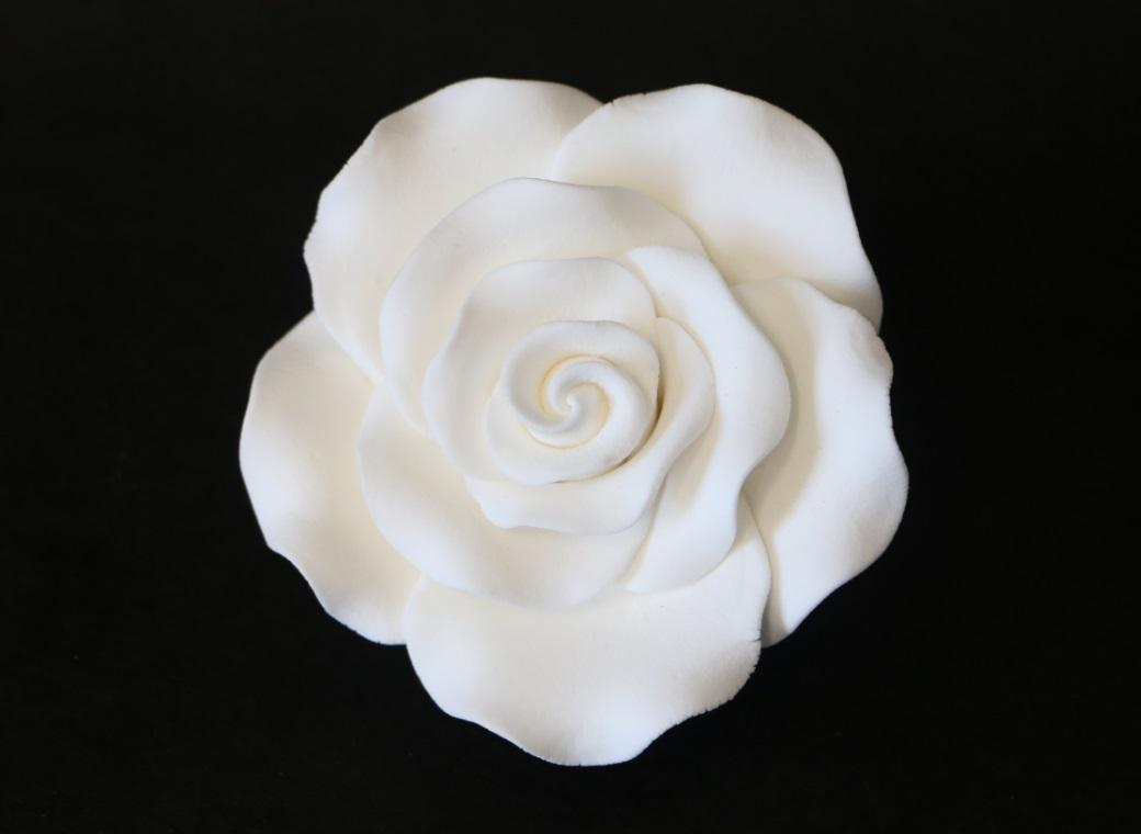 Gumpaste White Rose - Extra Large
