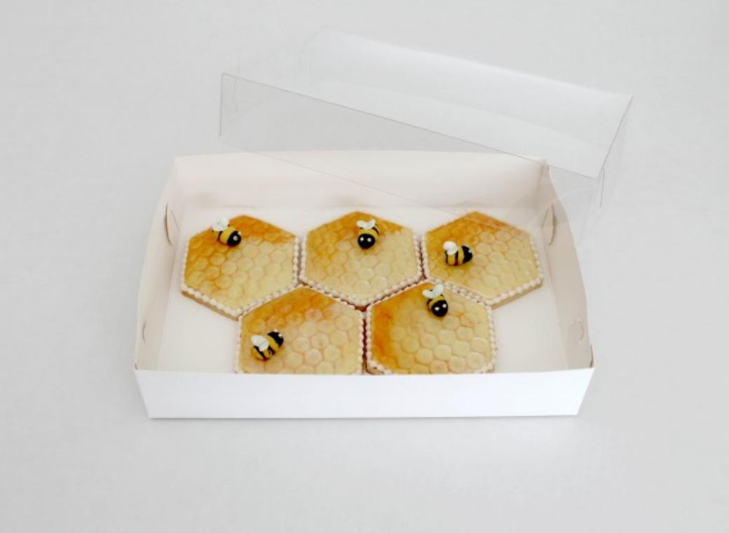 LOYAL Clear Lid Biscuit Box 10 x 7in