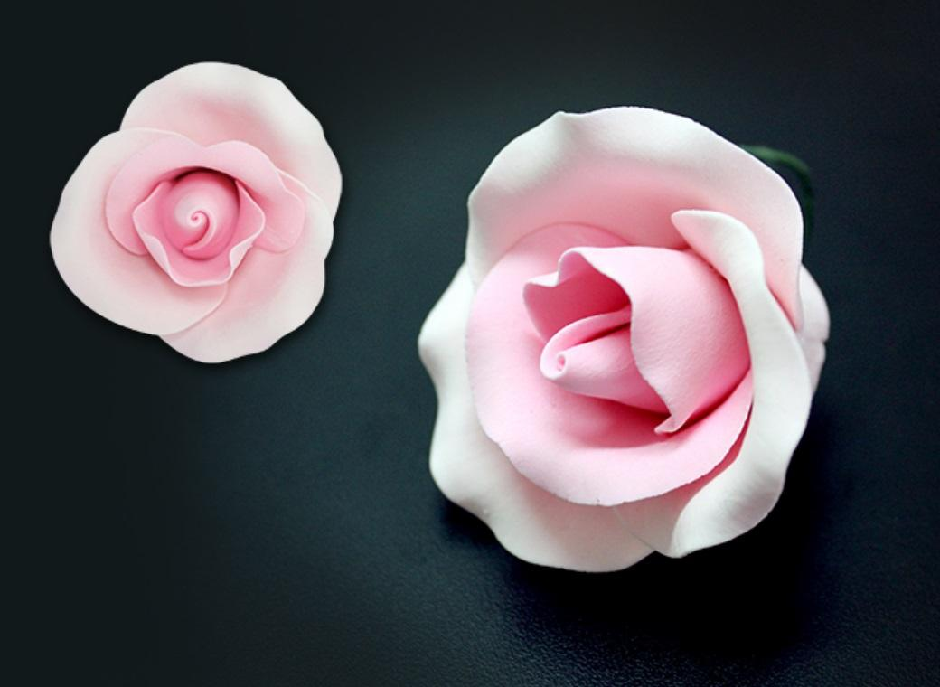 Single Gumpaste Rose Medium - Pink